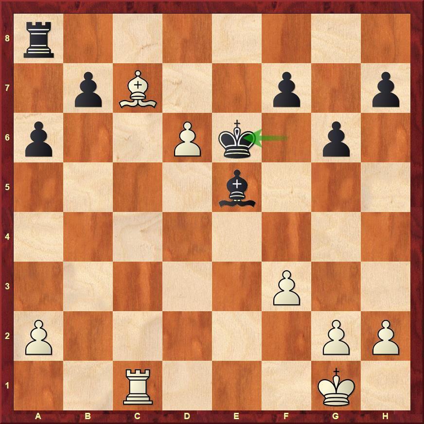Prague Open 2018: Raahul VS Scores His Second IM Norm